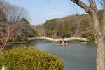 070304薬師池公園(薬師池)