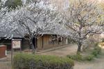 090304薬師池公園(旧永井家)